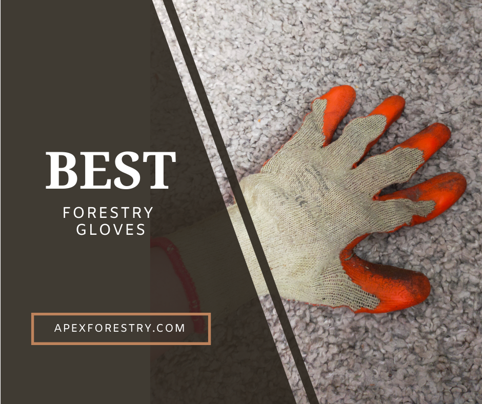 The best forestry gloves