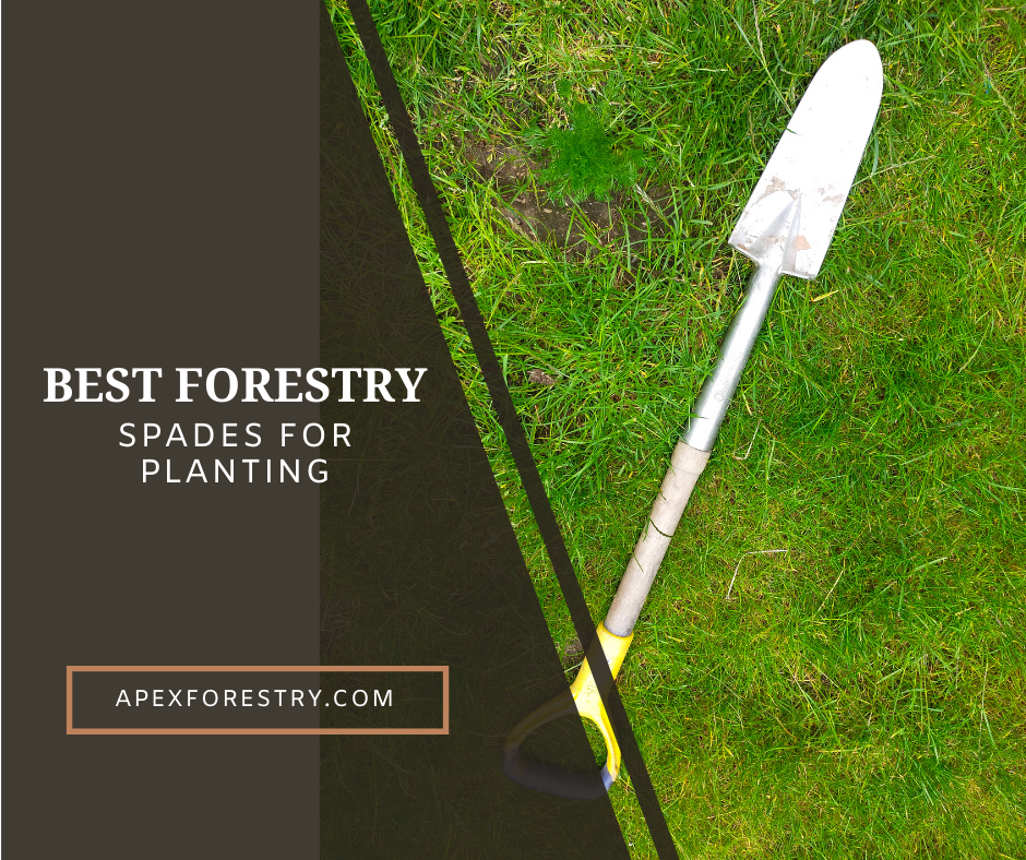 The best forestry spades for planting