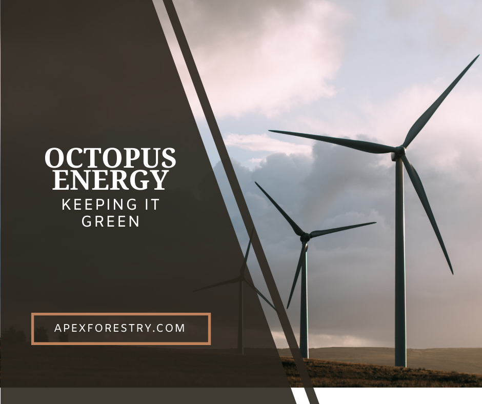 Keeping it green with Octopus Energy